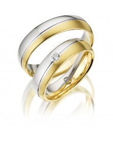 Ringe bicolor S234