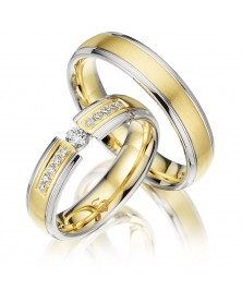 Ringe bicolor S235
